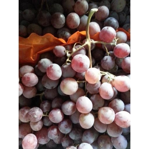 Grapes, Red - Crimson Seedless