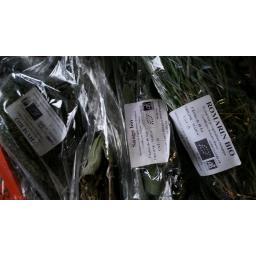 Herbs,fresh.jpg
