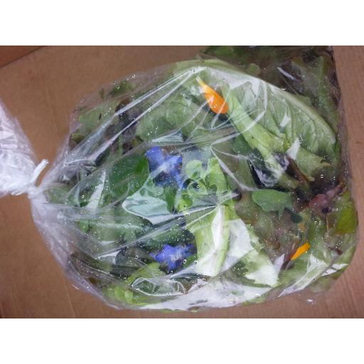 Salad Bag.jpg