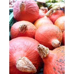 Squash Red Onion.jpg
